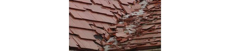 2 tipuri populare de acoperiş care s-ar putea să te surprindă neplăcut